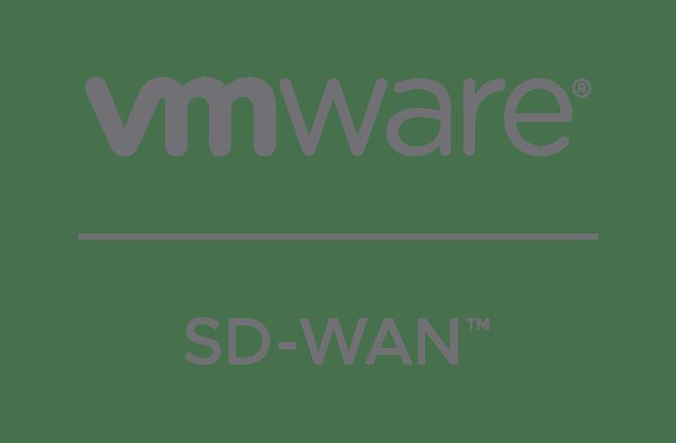 vmware SDWAN